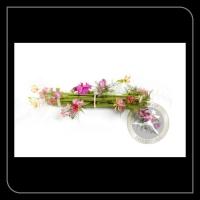 Speciaal arrangement 91905