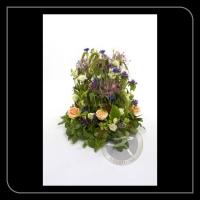 Speciaal arrangement 91907