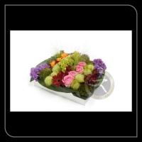 Speciaal arrangement 91927